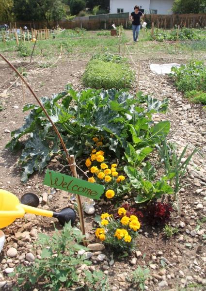Garten 1 klein
